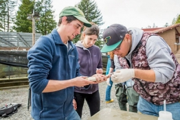 Students at the fish hatchery working on a fish